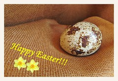 Beautiful Easter for all of you! :) (green_lover (I wait for your COMMENTS!)) Tags: easter egg fabric brown card frame