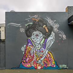 Mishap Fitzroy North 2019-04-14 (5D_32A2599) (ajhaysom) Tags: mishap fitzroy streetart graffiti melbourne australia canoneos5dmkiii canon1635l