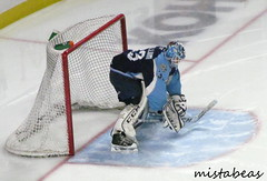 Tom McCollum (mistabeas2012) Tags: ahl hockey