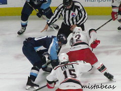 Close Up On Face Off (mistabeas2012) Tags: ahl hockey