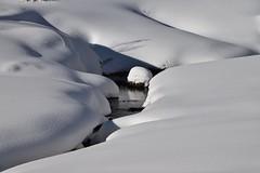 Douceur d'hiver - Winter softness (CHAM BT) Tags: neige blanche douce couche ombre eau branche hiver blanc soleil snow white soft layer shadow branch winter quilt fantasticnature winterbeauty