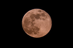 Full 'Pink' Moon (deltic17) Tags: lunar moon supermoon evening pink fullmoon canon canon5dmk4 zoom telephoto