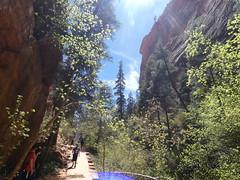 P1000500 (odetojoy24) Tags: zion utah angels landing hiking