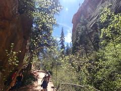 P1000498 (odetojoy24) Tags: zion utah angels landing hiking
