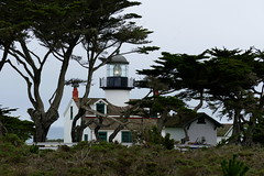 Point Pinos Lighthouse (ivlys) Tags: usa california pacificgrove pointpinoslighthouse leuchtturm schild sign baum tree montereycypress montereyzypresse landschaft landscape natur nature ivlys