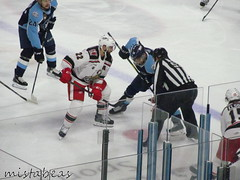 22 On 10 (mistabeas2012) Tags: ahl hockey