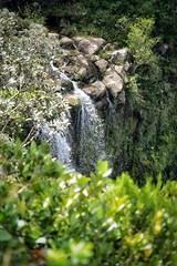 Gorges de la rivière noire (https://tinyurl.com/jsebouvi) Tags: gorge waterfall water spring nature blackriver landscape top rock natural green height