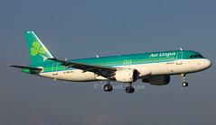 EI-DVN (Ken Meegan) Tags: eidvn airbusa320214 4715 aerlingus dublin 2112015 airbusa320 airbus a320214 a320