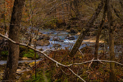 Spring flow (ralphlaforge) Tags: durham usa