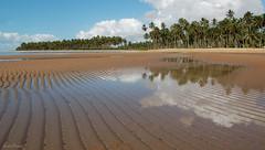 Praia de Japaratinga (Lucia Cysneiros) Tags: brasil praia alagoas japaratinga reflexos