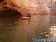 DSCN8988 (Lake Powell Adventure Company) Tags: kayak kayaking kayakinglakepowell lakepowellkayak paddling slotcanyon southwest lakepowel lglencanyon page utah glencanyonnationalrecreationarea watersport guidedtour kayakingtour seakayakingtour seakayakinglakepowell arizonahiking arizonakayaking utahhiking utahkayaking recreationarea nationalmonument coloradoriver antelopecanyon labyrinthcanyon facecanyon boat people water arizona