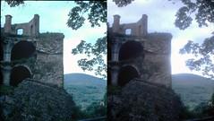 Batch E 0004 (dizzygum) Tags: vintage stereo 3d slide images 1960 european trip heidleberg