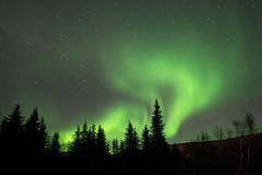 Aurora Magic - Explore (alicecahill) Tags: alaska night northernlights ©alicecahill stars sky usa aurora ak chenahotsprings