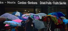 Vendredi Parapluies ( P-A) Tags: parapluies pluie maussade vendredisaint triste froid vent urbain ville cité nikond800 surlevif photos simpa©