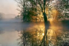 Finally Easter morning (Aspenlaub (blattboldt)) Tags: easter morning sunrise orange trees river foggy misty zeissloxia2485sonnart sonyilce7rm3 alpha7riii zeiss sony carlzeiss ilce7rm3 manualfocus manualiris manualexposure specialthankstochristophecasenaveandhisteamfromzeissfortheirpersonalinvolvementinthedevelopmentoftheloxialensline ⚶ emount berakhah בְּרָכָה loxia2485 loxia2485sonnar 85mm 51695547 sonnar rhapsodic epic poetic laudātū landscape europe germany thuringia jena saale mittleressaaletal thuringiansaale middlesaalevalley