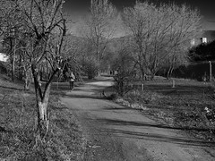 Running b&w (GiulioBig) Tags: stile blackwhite brescia lombardia italy