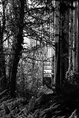 Door open (Arnaud Gabriel) Tags: trave travel voyage france tdf van vanlife occitanie landscape languedoc roussillon midipyrenees
