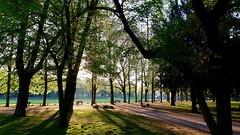 #Bonn #Ostermorgen #Hofgarten (RenateEurope) Tags: bonn ostermorgen hofgarten germany rheinland renateeurope
