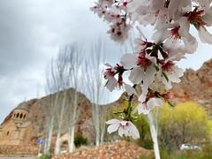 Noravank Monastery.  Armenia. (anilegna) Tags: iphone