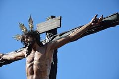 La sed (beliberri) Tags: semana santa de jerez 2019 cofradia procesion turismo españa spain cultura hermandad del ased lunes santo