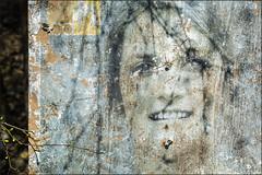 Seen during a forest walk (Eva Haertel) Tags: eva haertel canon3dmarkiii wald forest walk spaziergang plakat poster alt old vergammelt scruffy mädchen girl jung young frau woman portrait verstümmelt mutilated schraube screw zweig branch mood