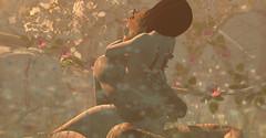 drєαms αnd mєmєs (ѕєαи) Tags: secondlife sl forest enchanted angel virtual chicken digital modulus feathers shadow catwa speakeasy