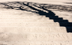 Blockgraphik (Dingens-Kirchen) Tags: feld acker baum schatten shadow abstract ismaning