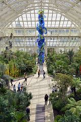 Inside the Temperate House (cdb41) Tags: kew gardens dale chihuly temperate house