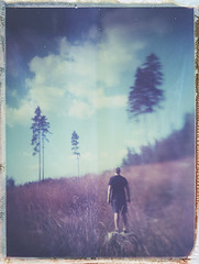 Behind the hill (Maija Karisma) Tags: polaroid instant pola littlebitbetterscan 559 4x5 expiredfilm peelapart graflex graflexpacemakerspeedgraphic pacemakerspeed roidweek2019 spring largeformat