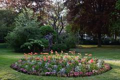 L'effort de Pierre Roche (Eddie C3) Tags: jardinduluxembourg paris luxembourggardens parks parisfrance sculpture pierreroche