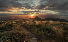 Boardwalk (zebedee1971) Tags: landscape new zealand taranaki egmont mountain mt volcano summer sunrise sun light fog cloud pouakai tarn crossing circuit boardwalk sunlight cold tussock grass north island tourist orange hills park national