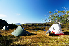 20190419-42-Tents on Gould Plateau (Roger T Wong) Tags: 2019 australia cradlemountainlakestclairnationalpark glouldplateau lakestclair msrhubbanx macpacmicrolite np nationalpark rogertwong sel24105g sony24105 sonya7iii sonyalpha7iii sonyfe24105mmf4goss sonyilce7m3 tasmania bushwalk hike outdoors tent tents tramp trek walk