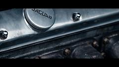 2018.06.09_020222 (LeSzal) Tags: motor transportation cooled metal mechanics engineering transport metallic system belt combustion vintage aluminium cooling cylinder maintenance piston horsepower auto silnik rv fuel part mechanical industry fingers vehicle van automobile fan transmission car engine power gear