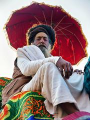 Sunny Winter Morning. (Prabhu B Doss) Tags: kumbh 2019 prayagraj india fujifilm gfx gfx50s gf3264mm fujilove fujifeed portraits kumbhmela prabhubdoss travelphotography streetphotography
