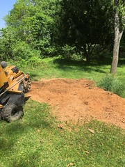 B593E8E6-45C6-4CB9-A059-A8A353236A7B (Lakeview Stump Grinding) Tags: lakeview columbia strongsville stump grinding ohio station north royalton cleveland berea olmsted falls landscaping bay village northeast service grind removal