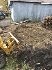 B20B402C-5773-4BB5-817A-8CC738859EA8 (Lakeview Stump Grinding) Tags: lakeview columbia strongsville stump grinding ohio station north royalton cleveland berea olmsted falls landscaping bay village northeast service grind removal