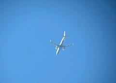 19Apr19 3.01pm Flybe G-FBJG (Daisy Waring World) Tags: aeroplane blue bluesky flybe embraererj175 gfbjg