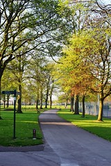 Evening Spring Sunshine at Sutton Lawn (LMW76) Tags: sutton lawn ashfield park easter spring evening sun sunshine blue sky nottinghamshire landscape 2019 trees
