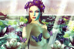Back in the water.. (Sistine Kristan (Sisely) - Toolbox Chicks) Tags: synco lode flowers lilies water blog photography portrait catwa doux mesh spring flair butterfly butterflies anc