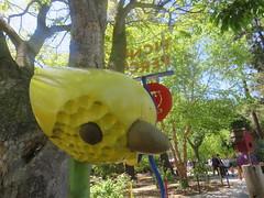 IMG_6732 (earthdog) Tags: 2019 needstags needstitle canon canonpowershotsx730hs powershot sx730hs kelleypark happyhollowparkzoo happyhollowzoopark happyhollow zoo park themepark amusementpark