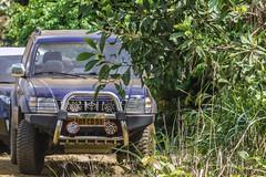 IL MIO 4x4   ---   MY 4x4 (Ezio Donati is ) Tags: foresta forest natura nature alberi trees fiume river auto car westafrica costadavorio riverbandama