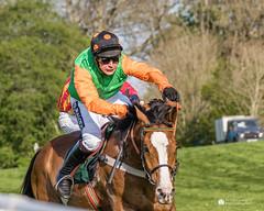 DSC02428.jpg (iannclem) Tags: flete pointtopoint races horses