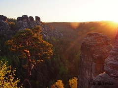 Bastei (EmiliaTe) Tags: sächsische schweiz hiking sunrise sunshine sonne morgen morning magic natur nature naturephotography outdoors trees gans easter ostern colors leaves orange shadows day ciel rocks felsen berge