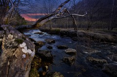 The Blue Hour (Jorge Falck Photography) Tags: landscape landscapes jorgefalckphotography river sundown sunset ngc cinematiclandscape dramaticlandscape dramatic pop colourpop canonef1740mmf4l canon6d canonphotography stones mountains trees forrest old norway