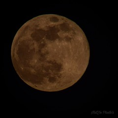 """""""Each of us is a moon, with a hidden face that nobody sees..."""" -Mark Twain- ✨ (miss.natjo) Tags: astronomy ciel sky lune moon nikon photography fullmoon pleinelune space universe"""