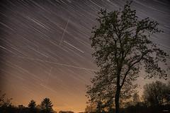 Startrail (metsemakers) Tags: startrail tree night leudal sony a7ii tamron
