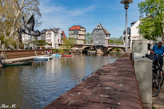 Brückenhäuser (trixi.mi) Tags: spaziergang badkreuznach nahe fliegen sonne city tauben licht sonnenschein brücke brückenhäuser