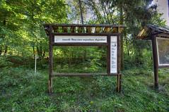 am Bogensee - 003 (sigkan) Tags: deutschland brandenburg bogensee lostplaces vondetkanaccount hdr nikond700 nikon1424mmf28