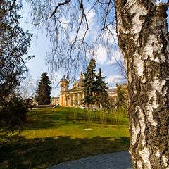 Spring is Coming (ivan.dolgoff) Tags: samyang75mmf35fisheye zaryadye moscow russia park church birch