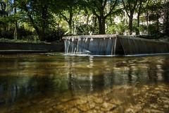 Kaskade (KaAuenwasser) Tags: kaskade wasser brunnen wasserspiel treppen bauwerk kunst stadtgarten karlsruhe anlage ort stelle platz baum bäume pflanzen